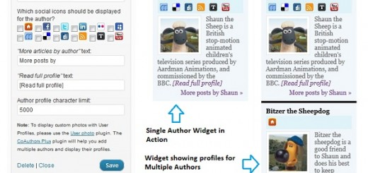 Author Spotlight Wordpress Widget